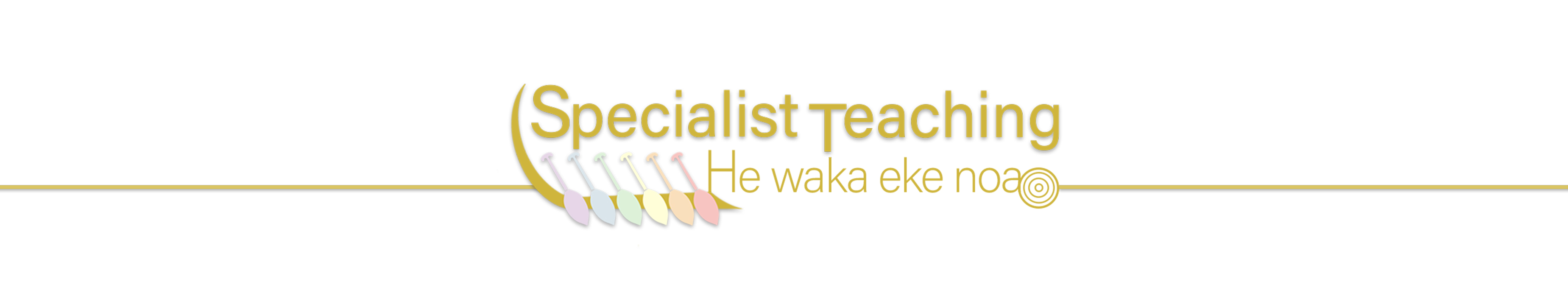 Specialistic teaching